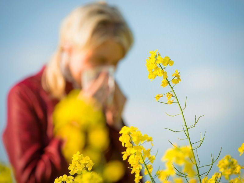 Llega la primavera y las alergias. 6 consejos para evitarlas
